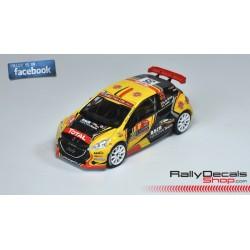 Peugeot 208 R5 - Guillaume de Mevius - Rally Montecarlo 2018