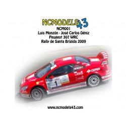 Luis Monzón - Peugeot 307 WRC - Rally Santa Brígida 2009