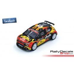 Citroen C3 R5 - Guillaume de Mevius - Rally Montecarlo 2019