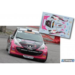 Frederic Comte - Peugeot 207 S2000 - Rally Mont-Blanc 2013