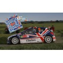 Guy Wilks - Peugeot 207 S2000 - Rally Ypres 2011