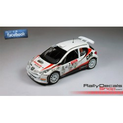 Peugeot 207 S2000 - Jean Luc Roche - Rally MontBlanc 2013